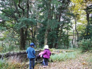 楠本川キャンプ 038