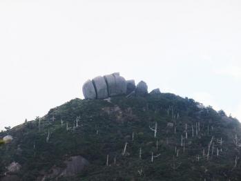 屋久島 030 - コピー
