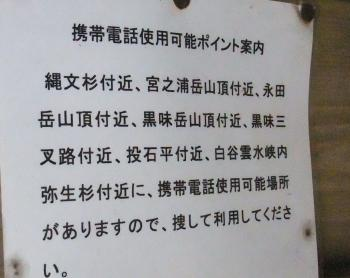 屋久島 224 - コピー