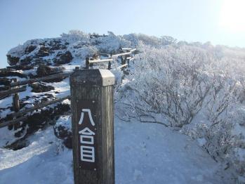 雪の韓国 015 - コピー