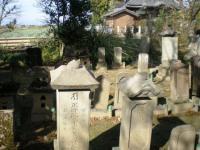 墓地 正田家