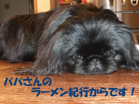 001_convert_20100324120549.jpg