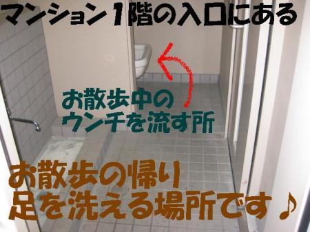 002_convert_20100422083221.jpg