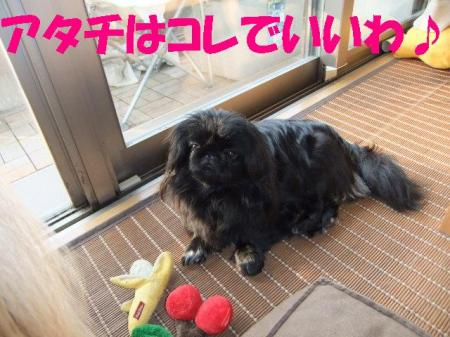 003_convert_20100330075201.jpg
