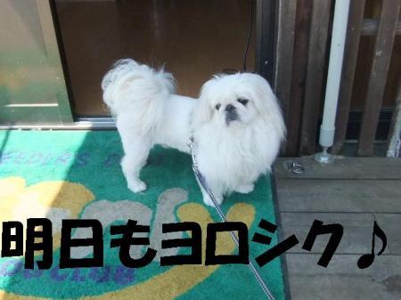 008_convert_20100426135132.jpg