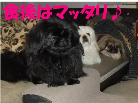 009_convert_20100313082032.jpg