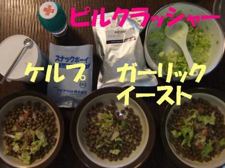 010_convert_20100507075022.jpg