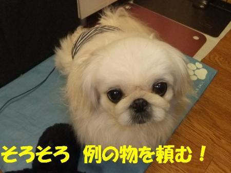 011502_convert_20110115123146.jpg