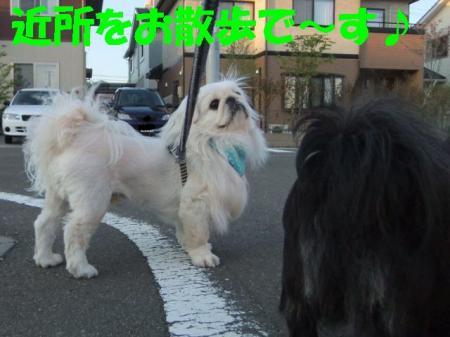 01_convert_20100511140919.jpg
