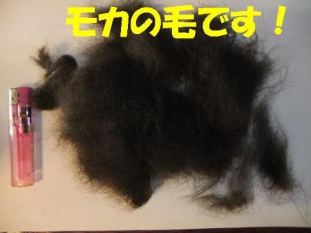 01_convert_20100625091633.jpg