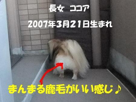 01_convert_20100806093157.jpg