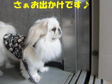 01_convert_20101004083301.jpg