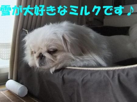 01_convert_20101027110822.jpg