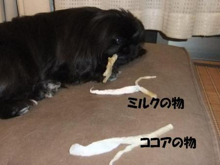 02_convert_20100603080107.jpg