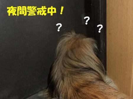 02_convert_20100714085024.jpg