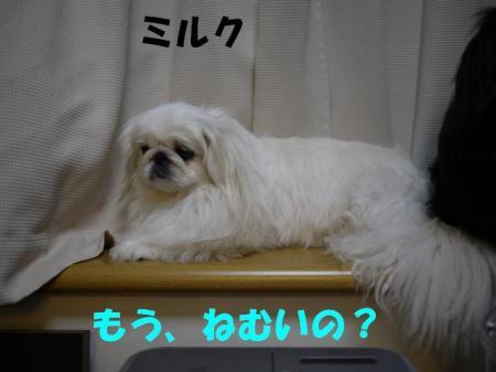 02_convert_20100721053553.jpg