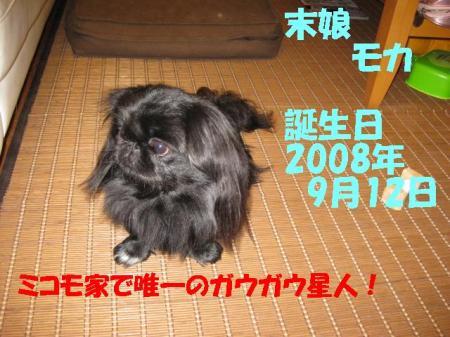 02_convert_20100802141402.jpg