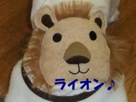 02_convert_20100812072346.jpg