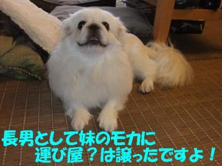 02_convert_20100909095444.jpg