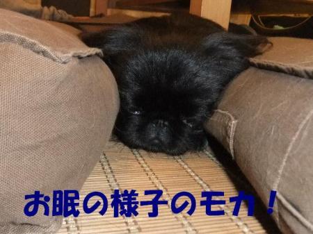 02_convert_20101011195928.jpg