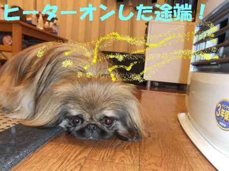 02_convert_20101027110836.jpg