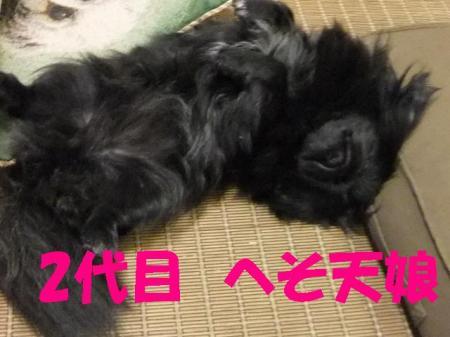 03_convert_20100507074837.jpg