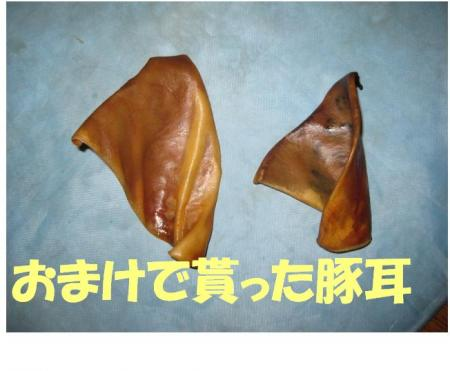 03_convert_20100524060754.jpg