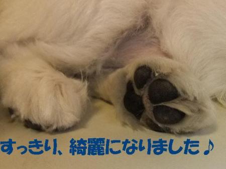03_convert_20100603080121.jpg