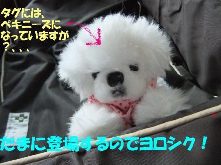 03_convert_20100713115155.jpg