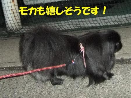 03_convert_20100727075506.jpg
