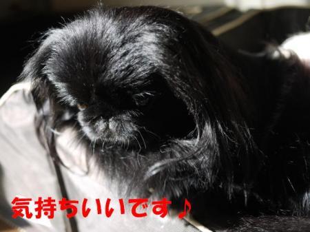 03_convert_20100919103010.jpg