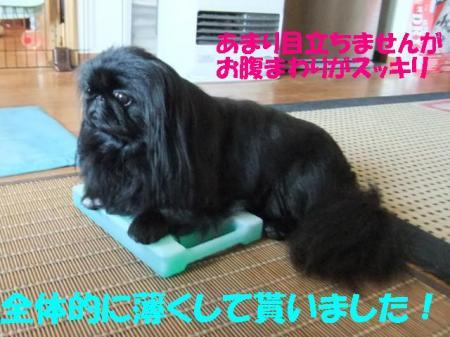 04_convert_20100806093255.jpg