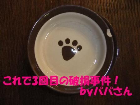 04_convert_20100913114318.jpg