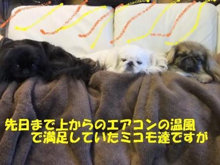 04_convert_20101027111323.jpg