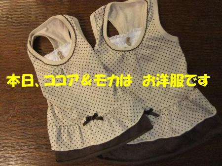05_convert_20100608094833.jpg