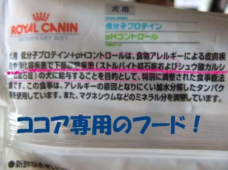 05_convert_20100615090019.jpg