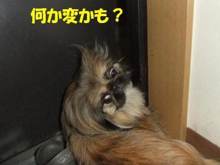 05_convert_20100714085057.jpg