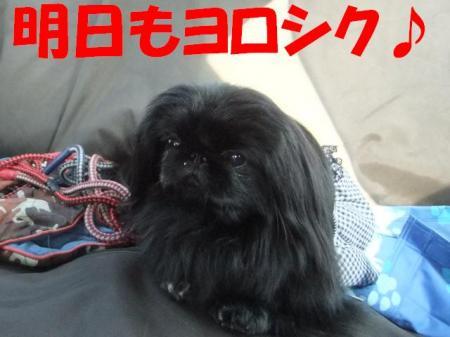 06_convert_20100430232015.jpg