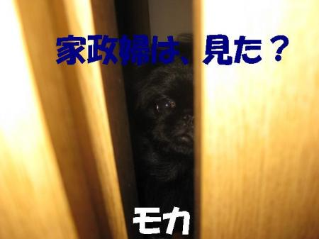06_convert_20100624081257.jpg