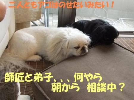 07_convert_20100909095609.jpg