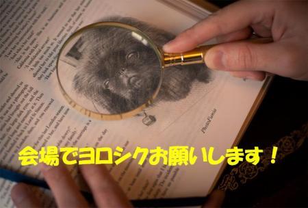 123456_convert_20101202220741.jpg