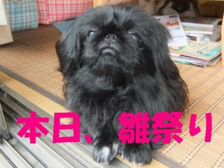 髮帷・ュ繧垣convert_20100303080337