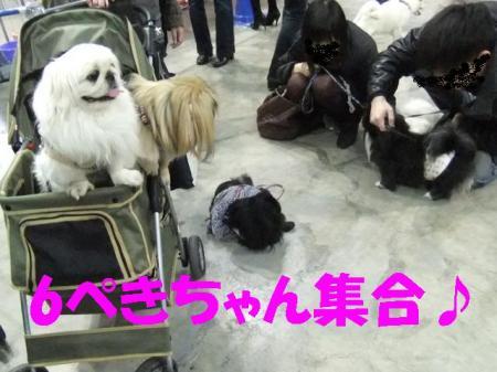 6縺コ縺浩convert_20100315081455