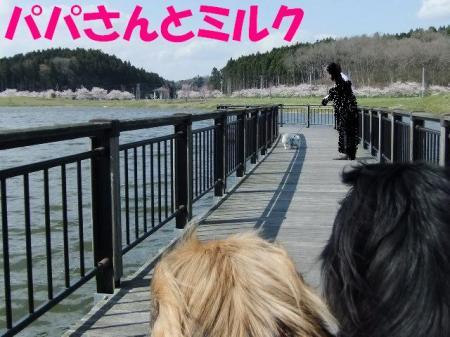 縺ソ縺・_convert_20100502102252