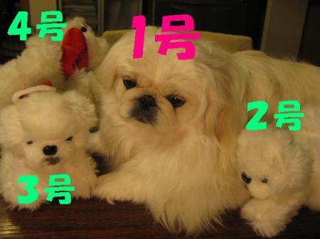 蛻・コォ2_convert_20100713115303