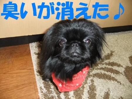 kieta_convert_20100323083200.jpg