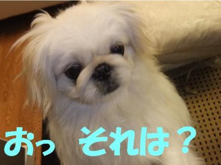 otu_convert_20100402113549.jpg