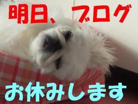 oyasumi_convert_20100227083504.jpg