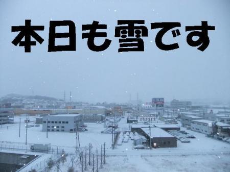 yuki_convert_20100206090038.jpg