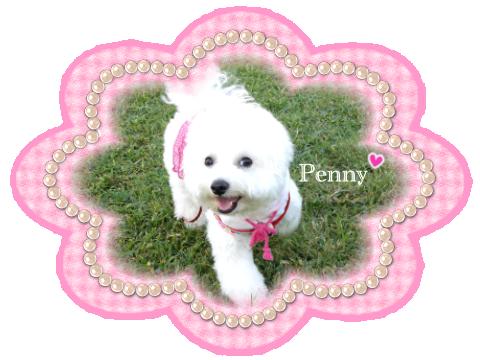 penny02 06